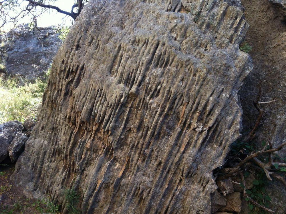 Ruta jurásica & Monte Hacho (Senderismo) Álora